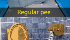 Il bagno di Airpnp